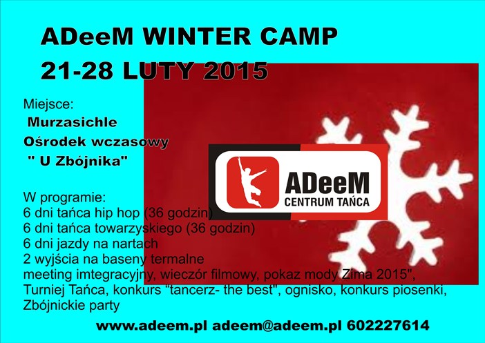 ADeeM_Winter_Camp_2015